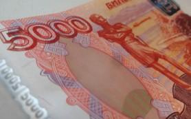 За год на Смоленщине зарегистрировано около 300 случаев сбыта фальшивок
