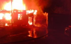 В пожаре в Смоленске погибли мать и сын