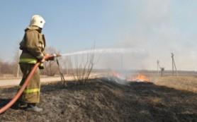 В Смоленской области 41 населенному пункту угрожают лесные пожары