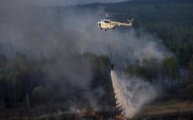 Смоленск и область обследуют с воздуха и из космоса на наличие пожаров