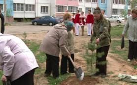 В смоленском микрорайоне Королевка появилась аллея в честь Великой Победы