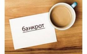 Закон разрешил объявлять банкротом физическое лицо