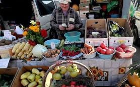 Аграриям выделили бесплатные места для сезонной торговли