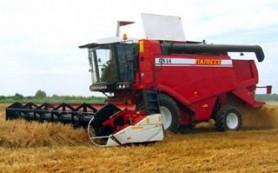 Белорусы по-прежнему помогают смолянам убирать урожай