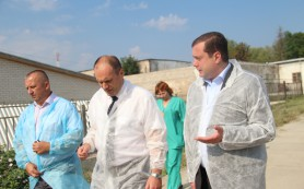 Глава Смоленской области посетил птицефабрику «Сметанино»