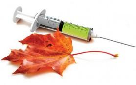 В Смоленской области привьют от гриппа 255 300 человек