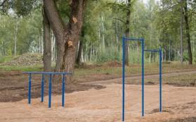В лесопитомнике начали возводить спортплощадку