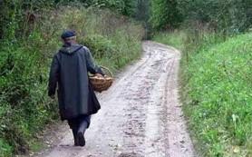 Полицейские вывели из леса плутавших два дня пожилых грибников