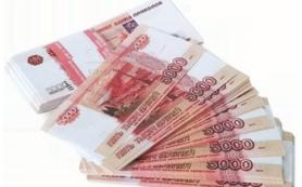 Директор предприятия недоплатил налоги в размере более 9,5 миллионов рублей