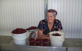 Пенсионерам Смоленска разрешили свободно торговать в двух точках города