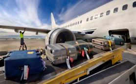 «Росавиация» и «Почта России» займутся доставкой багажа из Египта смоленским туристам