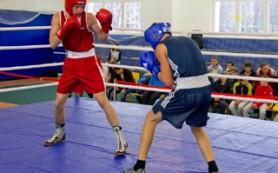 В Десногорске состоялся турнир по боксу