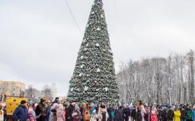К главной елке Смоленска будут пускать через турникет