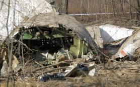 Польша хочет получить обломки разбившегося в Смоленске самолета