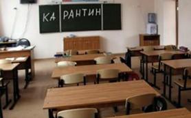 Смоленским школьникам карантин продлили еще на неделю