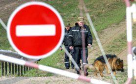 За три дня пограничники задержали 14 нелегалов