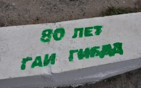 На бордюрах Смоленска появилась надпись «80 лет ГАИ-ГИБДД»