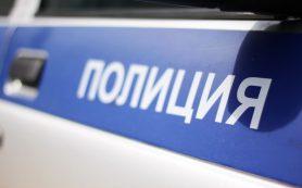 Полицейские за 20 минут нашли пропавшую 2-летнюю девочку