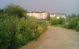 Суд обязал отремонтировать дорогу «Быльники-Печерск» под Смоленском
