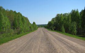 Контрабандисты отремонтировали дорогу под Смоленском для ввоза санкционных грузов