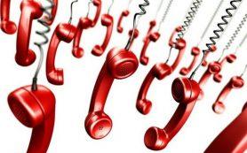 Куда смолянам звонить в экстренных ситуациях