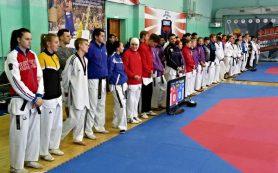 Смоленские тхэквондисты завоевали «серебро» и два «золота» на чемпионате ЦФО