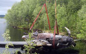 Красный Бор в Смоленске станет особо охраняемой природной территорией