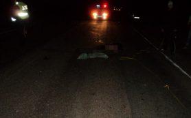 В Смоленском районе водитель иномарки переехал лежащего на дороге пешехода