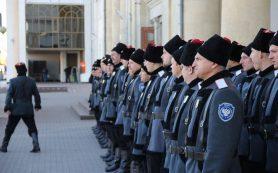 В Смоленске казачья кибердружина будет бороться с порнографией