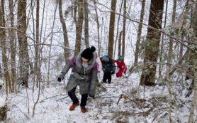 Смолян зовут на новогодние праздники в национальный парк