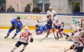 Смоленский «Славутич» выиграл второй матч полуфинальной серии у «Мордовии»
