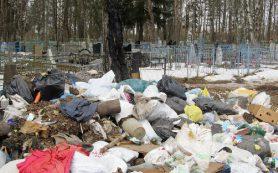 В Смоленской области кладбище превратили в свалку