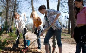 В Смоленске школьники высадили 35 елок у кинотеатра «Октябрь»