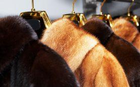 В Смоленске торговали меховым контрафактом