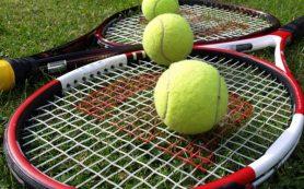 Смолян приглашают отметить всемирный день тенниса