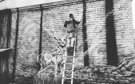 В Смоленске процесс создания экологического граффити попал на видео