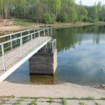 Что случилось с Реадовским озером?