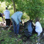 Смоленские активисты ОНФ подвели промежуточные итоги реализации проекта «Генеральная уборка»