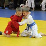 Занятия по самбо могут появиться в школах Смоленской области