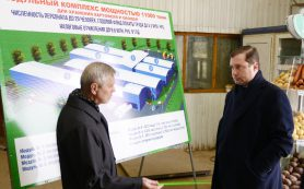 Губернатор посетил Козинский тепличный комбинат