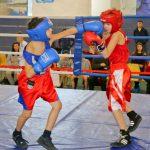 В Смоленской области прошел турнир по боксу