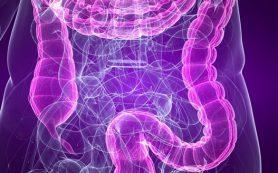Непроходимость тонкого кишечника – симптомы и возможные последствия
