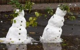 27 декабря в Смоленской области сохранится плюсовая температур