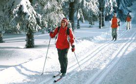 В Реадовском парке открылся лыжный сезон