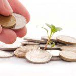 В Смоленской области собирают деньги на восстановление парка