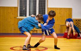 В десяти смоленских школах будут преподавать самбо