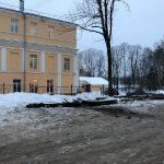 В центре Смоленска срубили клены