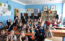Кинолектории по ПДД проходят в Сафоновском районе