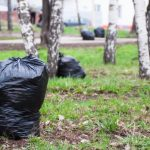 """Московский губернатор: """"Если везти мусор в Смоленск, надо заплатить"""""""