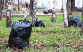 Смолян приглашают принять участие во Всероссийском экологическом субботнике